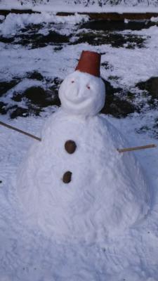 Museum snowman